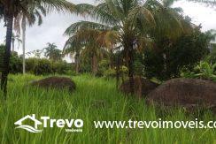 Lindo-terreno-de-costeira-a-venda-em-Ilhabela17