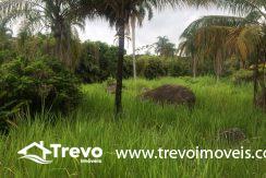 Lindo-terreno-de-costeira-a-venda-em-Ilhabela2